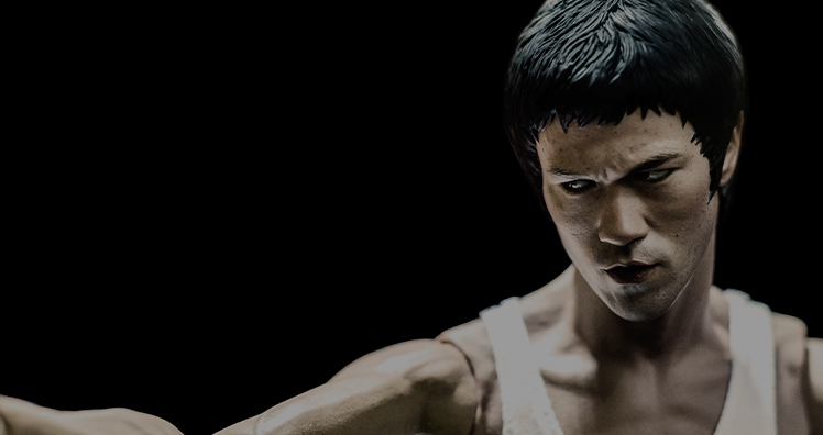 Bruce lee puching